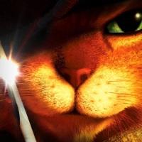 [NEWS CINÉ] MADAGASCAR 4, LE CHAT POTTE 2, HITMAN : 5 FILMS DATÉS POUR LA FOX ET DREAMWORKS ANIMATION