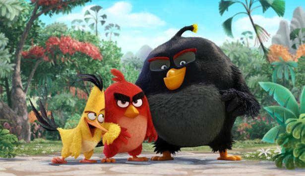 Angry birds héros
