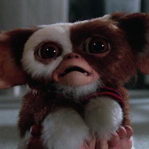 Gremlins Gizmo peur