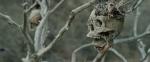 Bone Tomahawk pic2