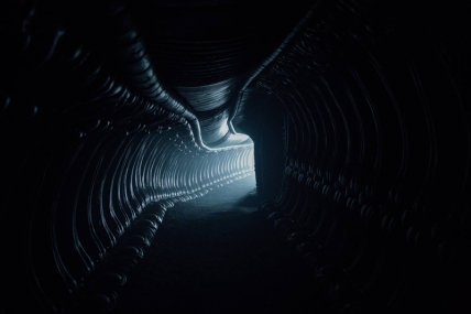 alien-covenant-pic2